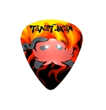 "Fender ""Medium"" Guitar Pick - Next Level"
