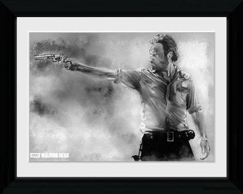The Walking Dead Rick Collector Print