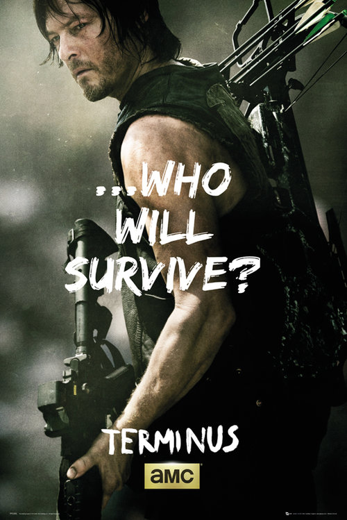 The Walking Dead Daryl Survive Maxi Poster