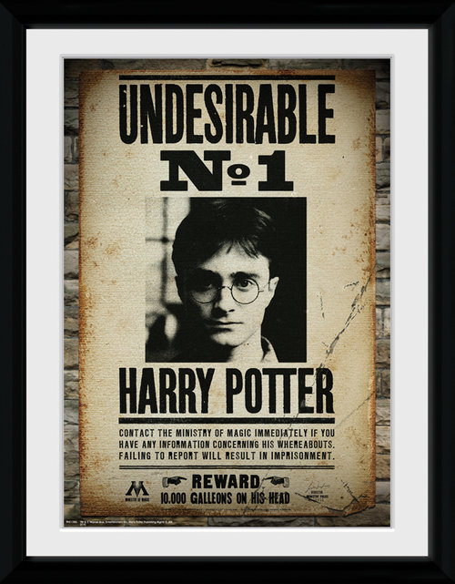 Harry Potter Undesirable No 1 Framed Collector Print