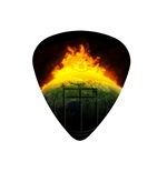 "Fender ""Medium"" Guitar Pick - From The End"