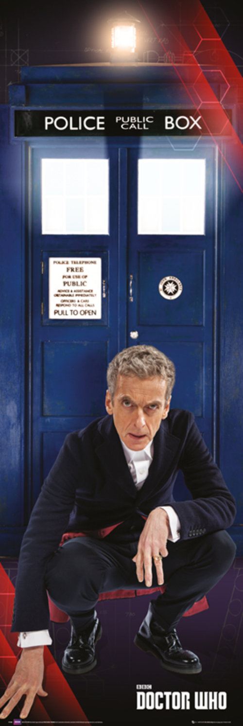 Doctor Who Tardis and Doctor Door Poster