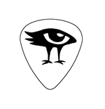"Fender ""Heavy"" Guitar Pick - sinuosa"