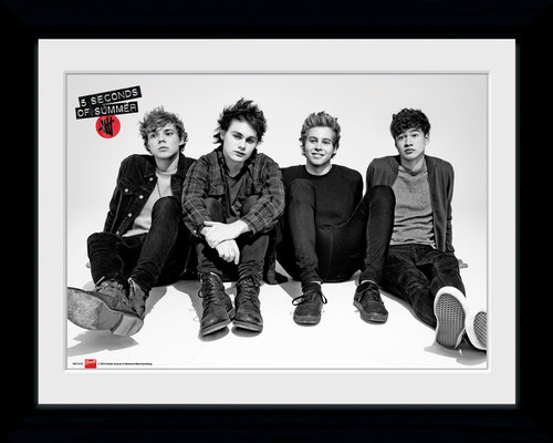 5 Seconds of Summer Sitting Framed Collector Print