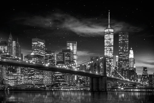 New York Freedom Tower B & W Maxi Poster