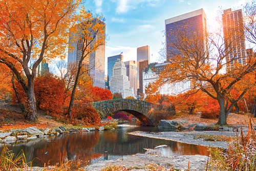 New York Central Park Autumn Maxi Poster