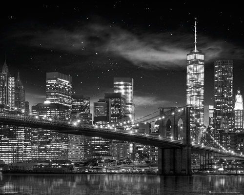 New York Freedom Tower Black and White Mini Poster