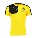 2015-2016 Borussia Dortmund Puma Training Shirt (Yellow)