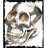 Metal skull with QOD Logo