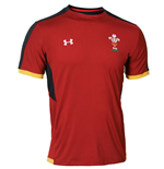 2015-2016 Wales Rugby WRU Training Tee (Red)