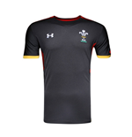 2015-2016 Wales Rugby WRU Training Tee (Black)