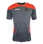 2015-2016 Espanyol Joma Training Shirt (Grey)
