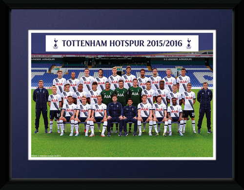 Tottenham Hotspur Team Photo 15/16 Framed Collector Print