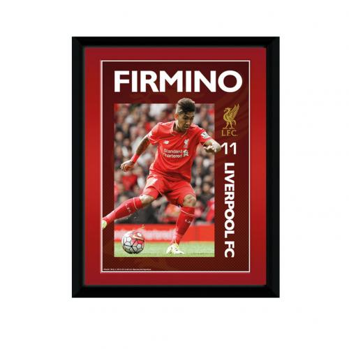 Liverpool F.C. Picture Firmino 8 x 6