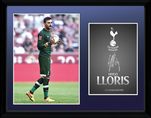 Tottenham Hotspur Lloris 15/16 Framed Collector Print