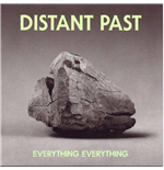 Vynil Everything Everything - Distant Past