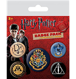 Harry Potter Pin 226380