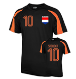 Holland Sports Training Jersey (sneijder 10)