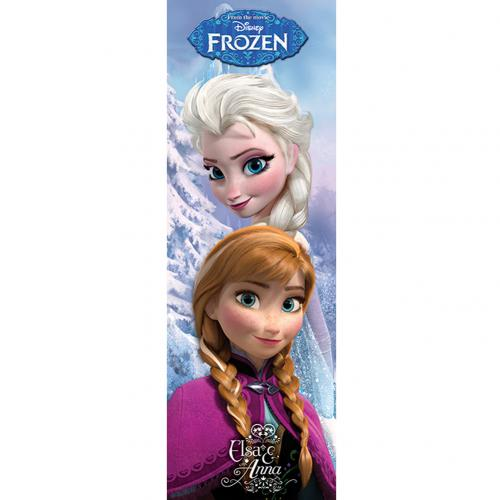 Frozen Door Poster 307