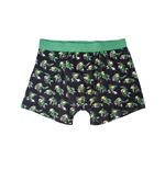 Zelda - All Over print Boxershort, Link