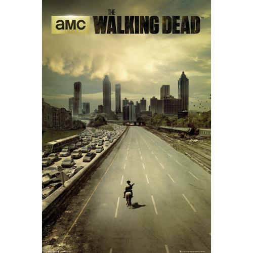 The Walking Dead Poster City 254