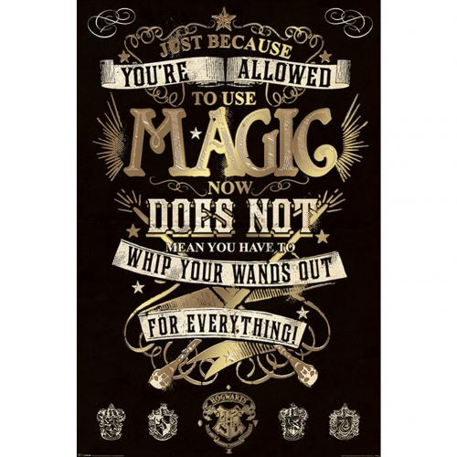 Harry Potter Poster Magic 282