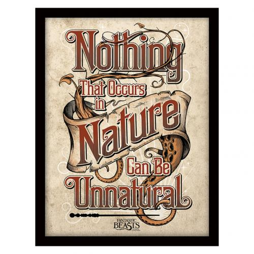 Fantastic Beasts Framed Print Nature 16 x 12