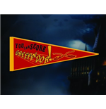 Harry Potter Pennant 253142