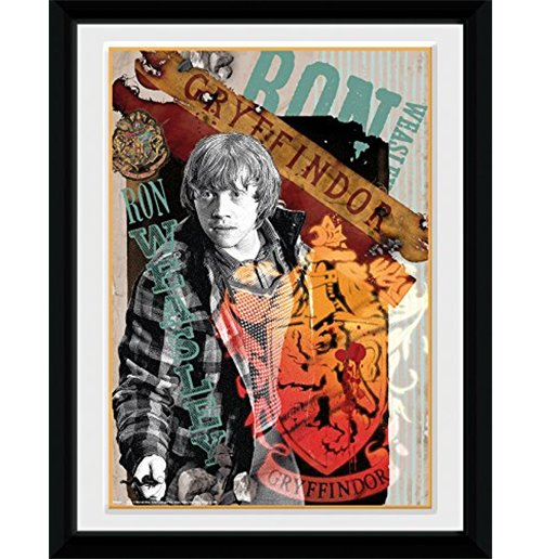 Harry Potter Print 253384