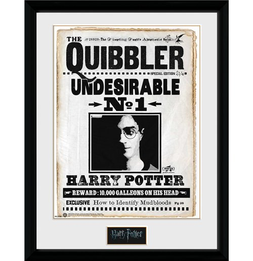 Harry Potter Print 253392