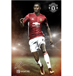 Manchester United FC Poster 255019