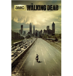 The Walking Dead Poster 255246