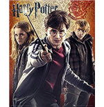 Harry Potter Poster 261086