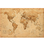 World map Poster 262127