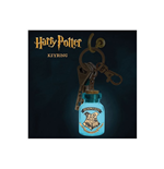 Harry Potter Keychain 262887