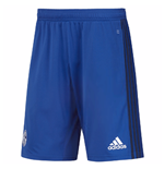 2017-2018 Schalke Adidas Training Shorts (Blue)
