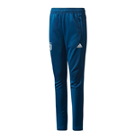 2017-2018 Juventus Adidas Training Pants (Blue)