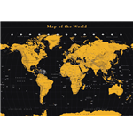 World map Poster 272371