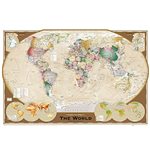 World map Poster 272372