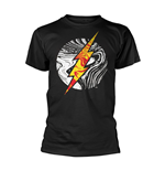 Dc Originals T-shirt Molten Flash Logo