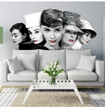 Audrey Hepburn Wall Stickers 274634