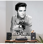 Elvis Presley Wall Stickers 274636