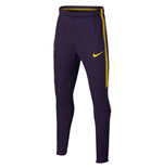 2017-2018 Tottenham Nike Training Pants (Purple)