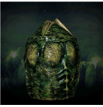 Alien Motion Activated Alien Storage Xenomorph Egg 53 cm