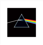 Pink Floyd Poster 284596