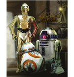Star Wars Poster 286475