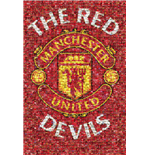 Manchester United FC Poster 287095