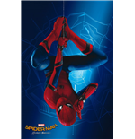 Spiderman Poster 288159