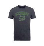 Harry Potter T-shirt Slytherin Sport