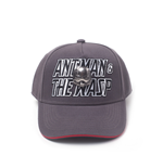 Ant-Man & The Wasp - 2D embroidery Metal Badge Curved Bill Cap